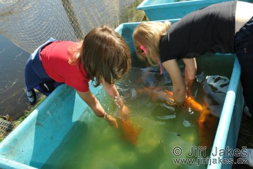 Rybí slavnosti 2011